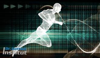 Differenziertes Athletik-Training Lehrgang Dr. Gottlob Institut