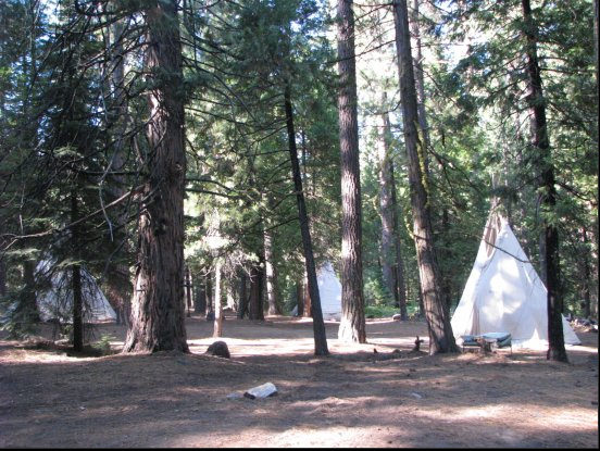 tipis at Camp Sugar Pine. I only spent about a week living in them, but some counsellors were there for entire summer