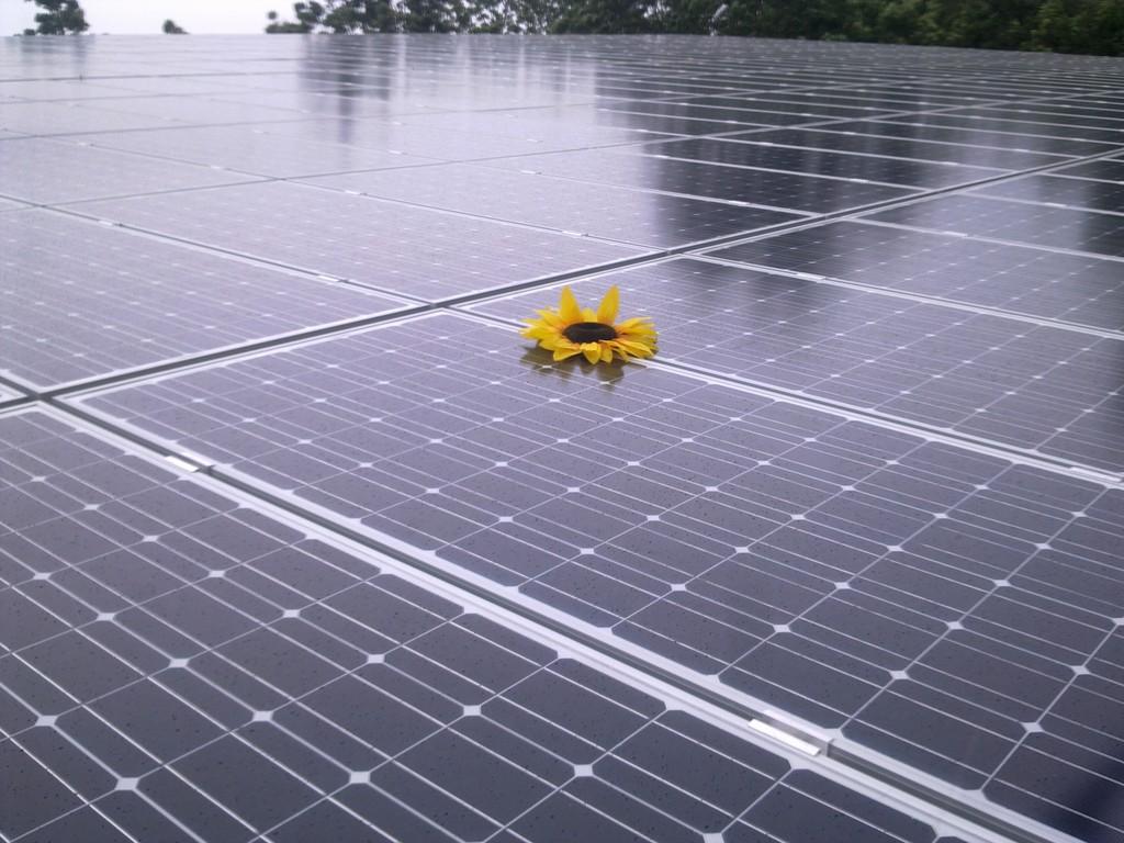 www-solareffekt.de