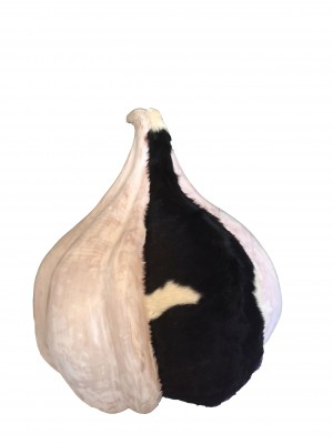 Garlic with a goat's coat (75x70x70)