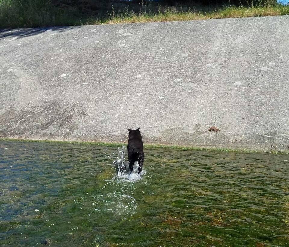 oui, j'aime l'eau...