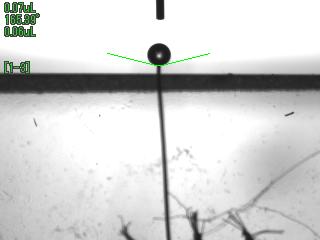 断面方向からの測定画像