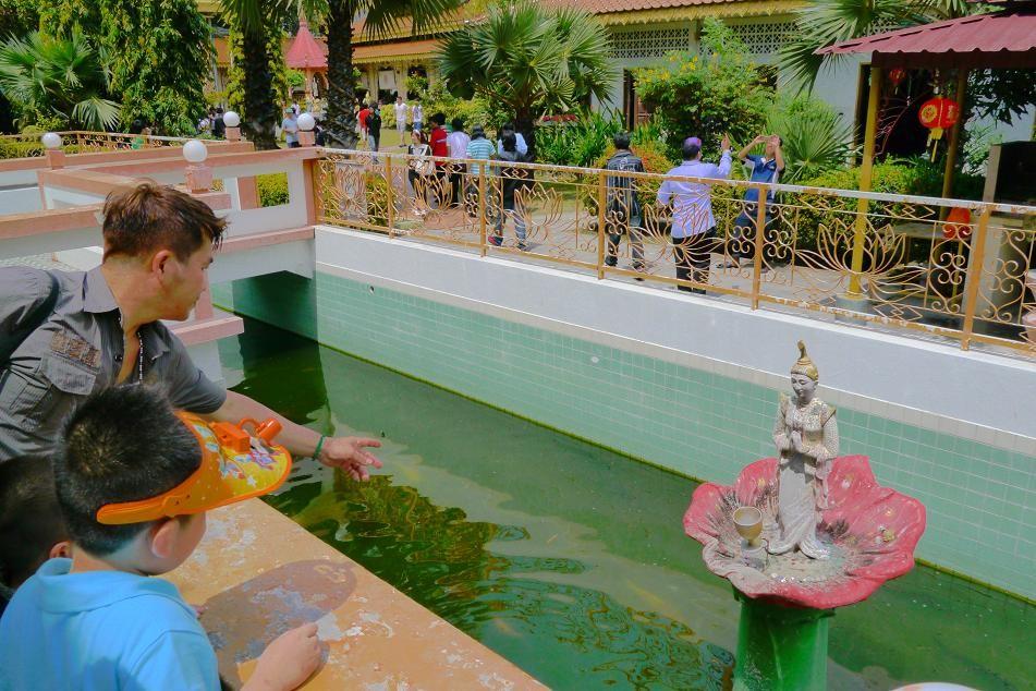 ビルマ系の仏教寺院。コインを投げて蓮に入れば…ラックが訪れるのかな。
