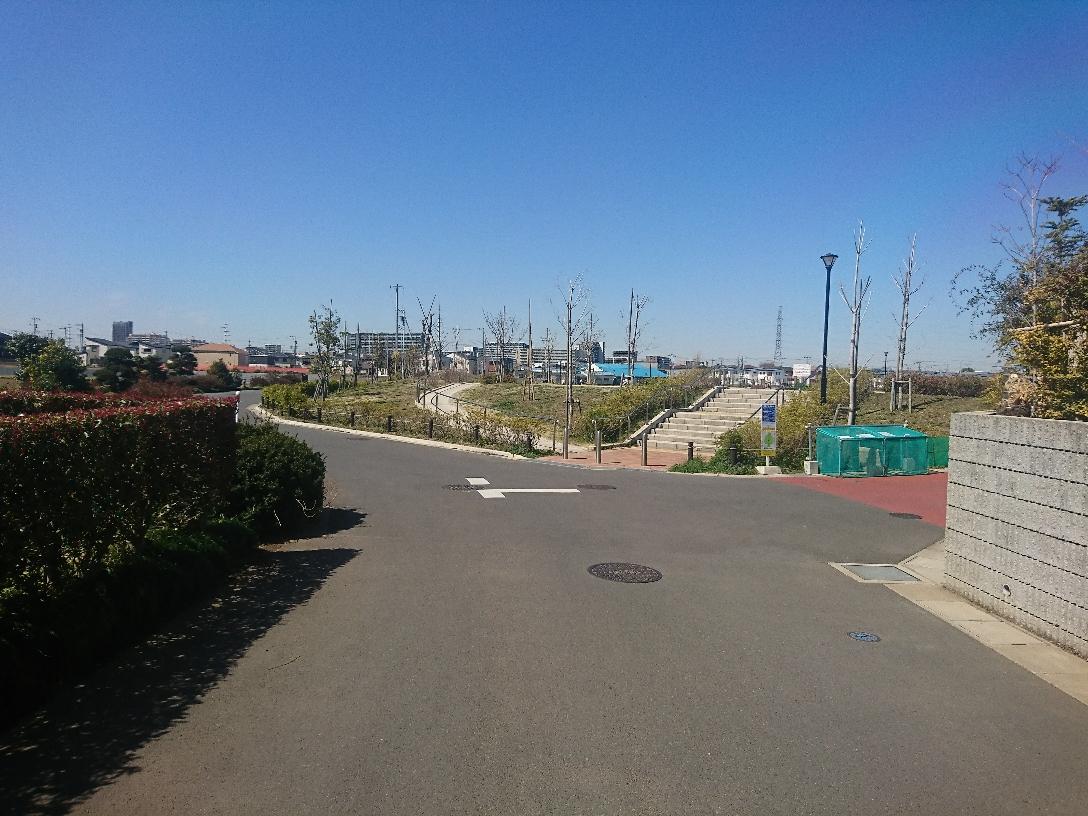 公園が見えてきたら右折します。