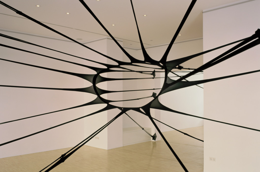Fleur de Peau III (Steinle Contemporary, 2006)