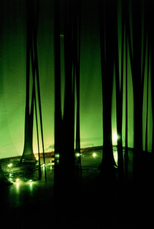 Zauberwald mit Glühwürmchen / The magic forest with glowworms / la forêt magique aux verts luisants (2000, installation, women's tights, sound-loop etc.)