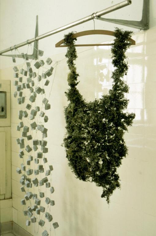 (mixed media: lichen, concrete cubes etc.)