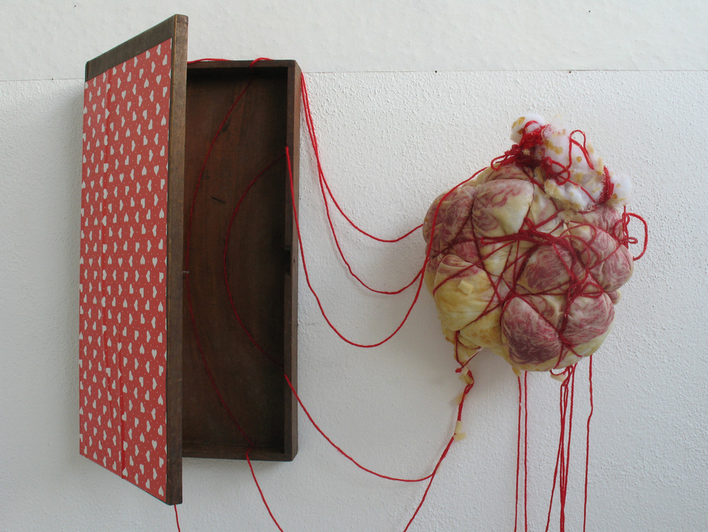 (2011, mixed media, wooden box, wool, latex etc.)