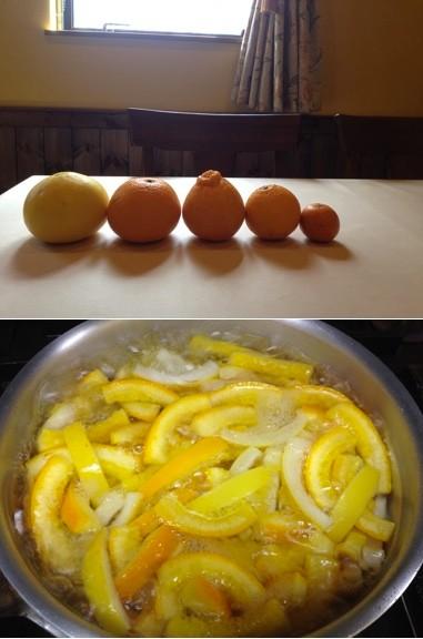 泉州産の分担、八朔、不知火など。果実はサラダ、皮は砂糖漬け。
