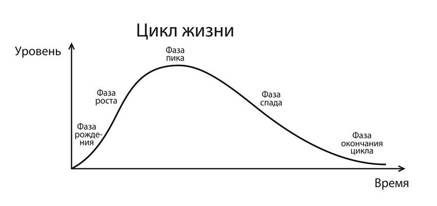 циклы жизни картинки друзья