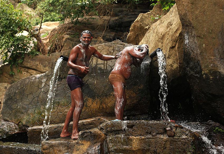Потри спинку. Шри-Ланка