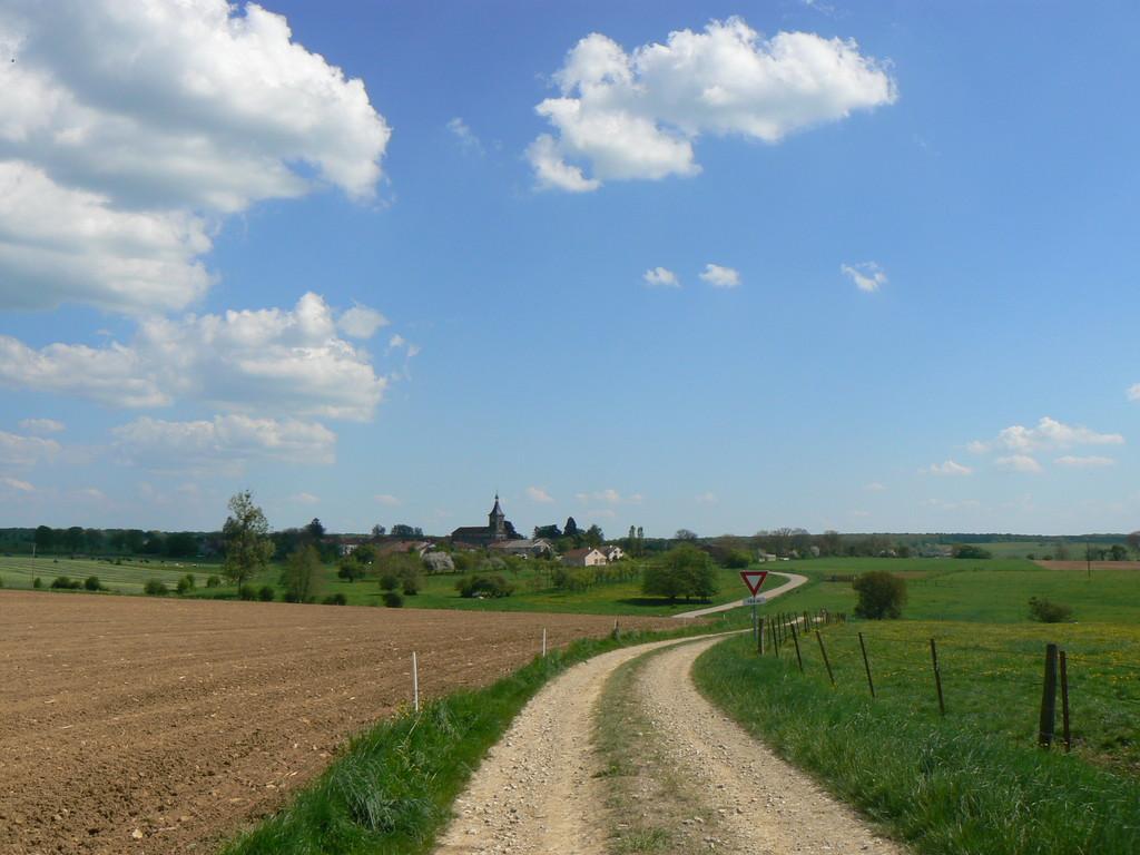 vue prise sur la route de Vrécourt ( Mérovingiens)