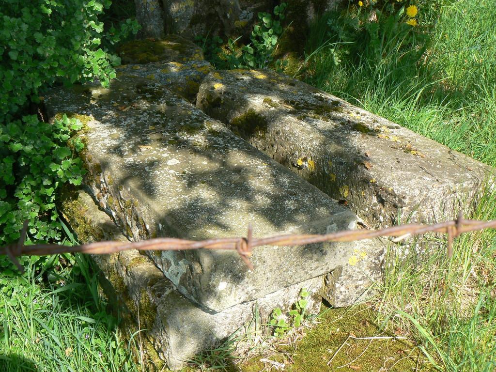 ruine de l'ancienne fontaine de Trémançon