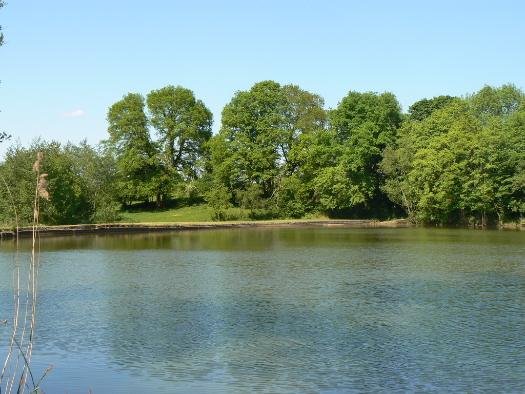 étang privé