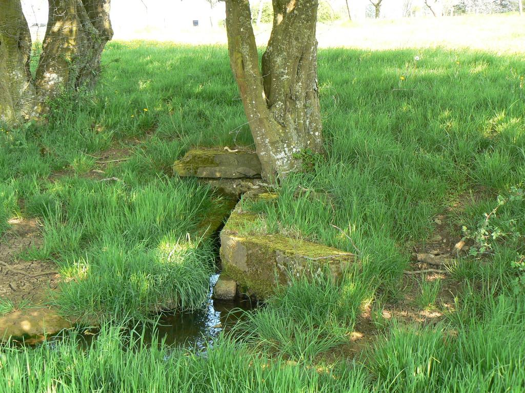 ancienne fontaine de Trémançon