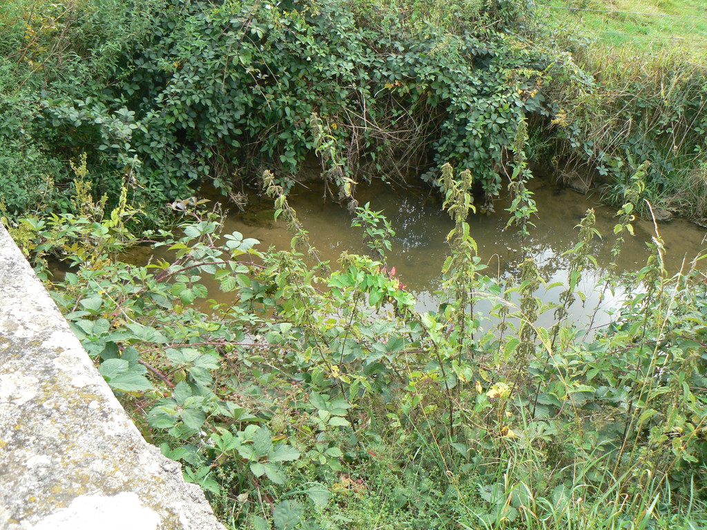 ruisseau route de Vrécourt