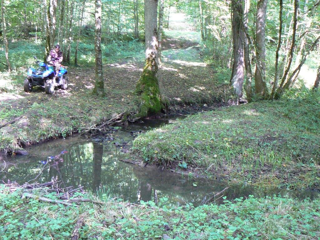 ruisseau de Chesnois