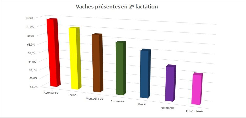 Dès la 1ère lactation, les vaches Abondance sont moins réformées que les autres races laitières.
