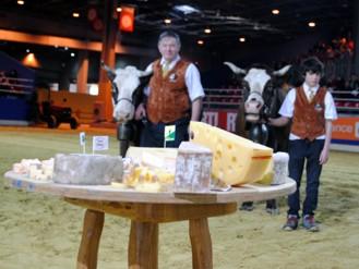 Plateau de fromage savoyard et haut-savoyard
