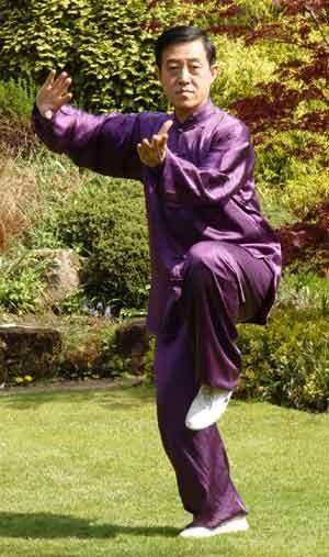 Grand-Maître CHEN Zhenglei