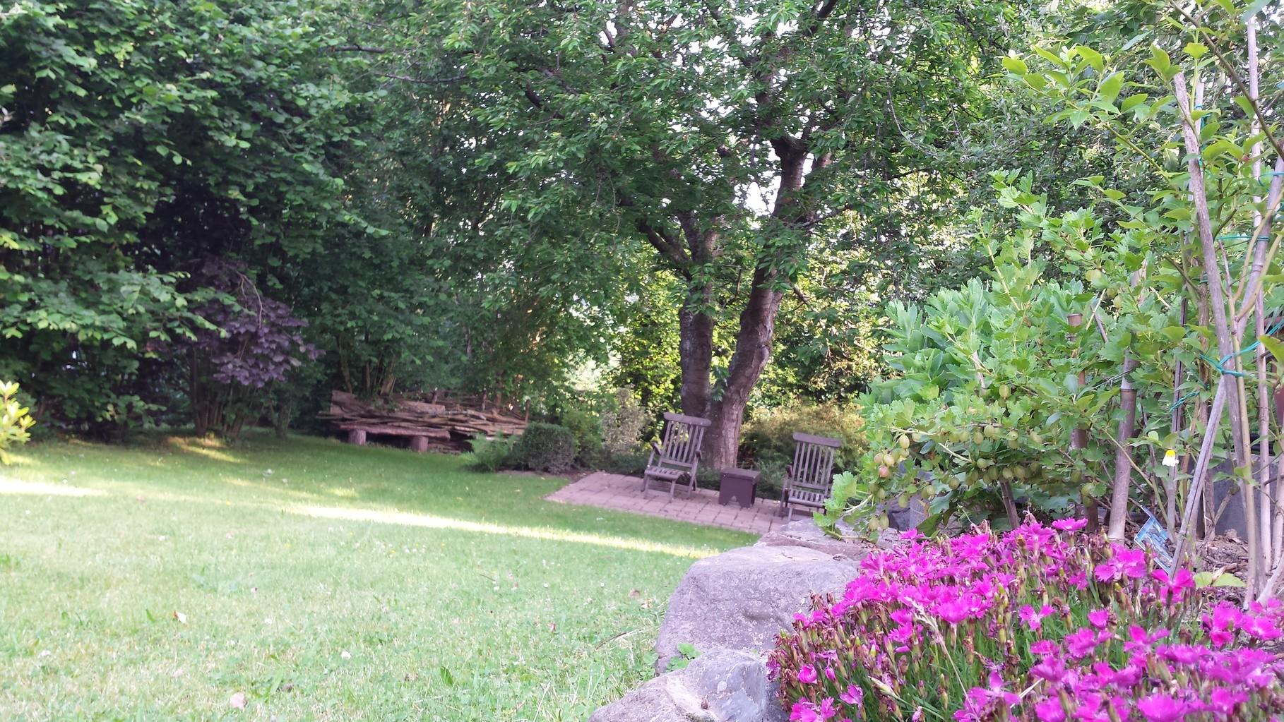 Ruhezone unter dem Kirschbaum