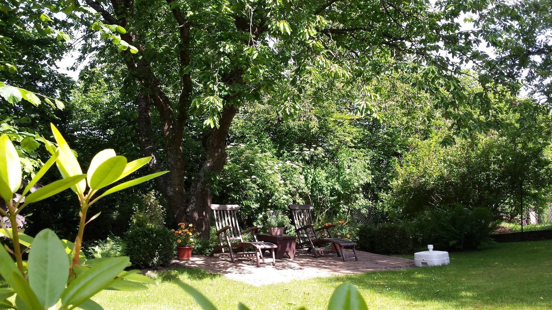 Blick zur Kirschbaumruhezone