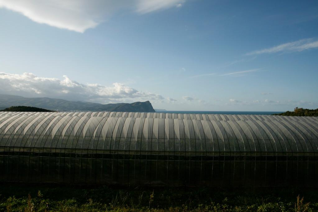 中野ファームからの眺望