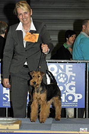 2. Pl. Junghunde CACIB Hoogstraten/Belgien 26.2.2011 (copyrights Karl Donvil)