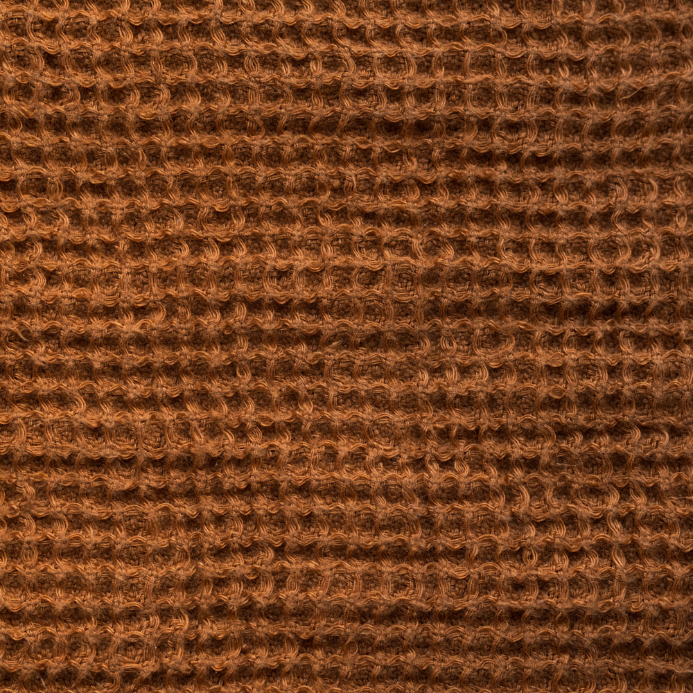 461/Meerkat