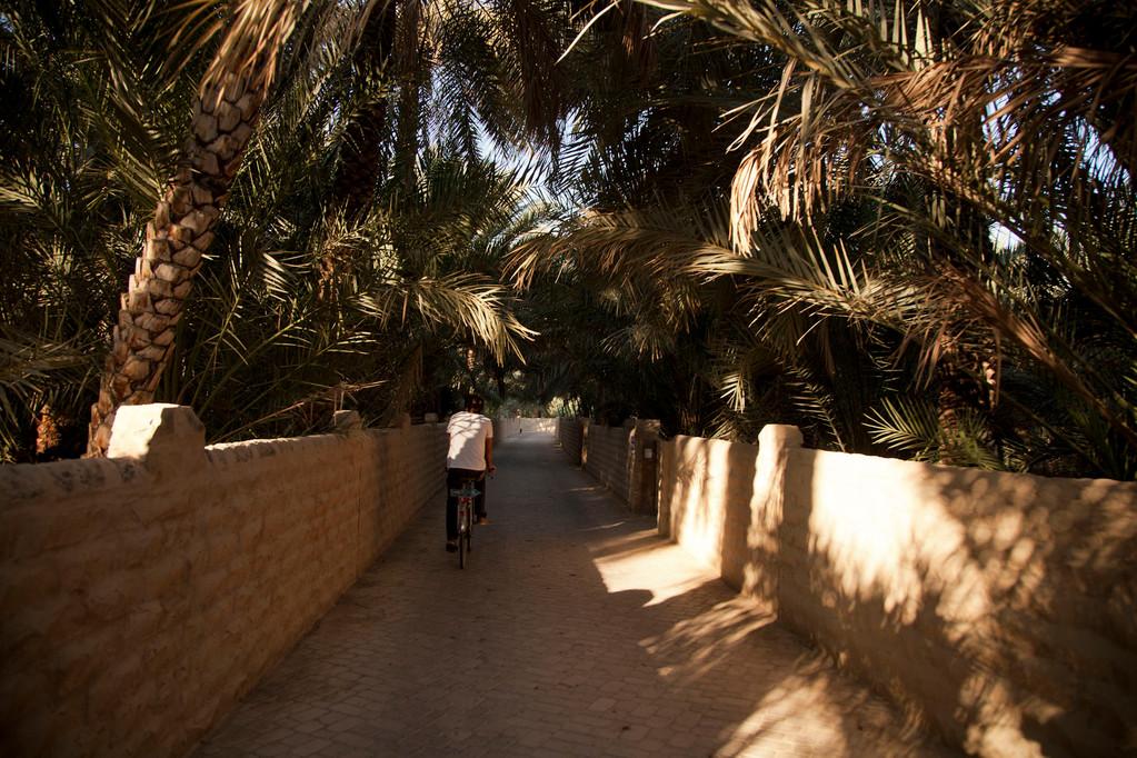 Fahrradtour durch die Oasengärten