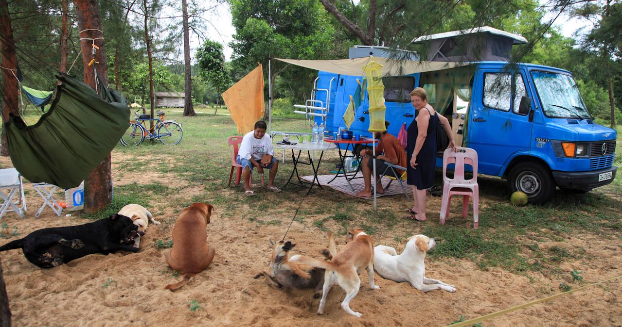 Ruby 'sammelt' Hunde & Katzen