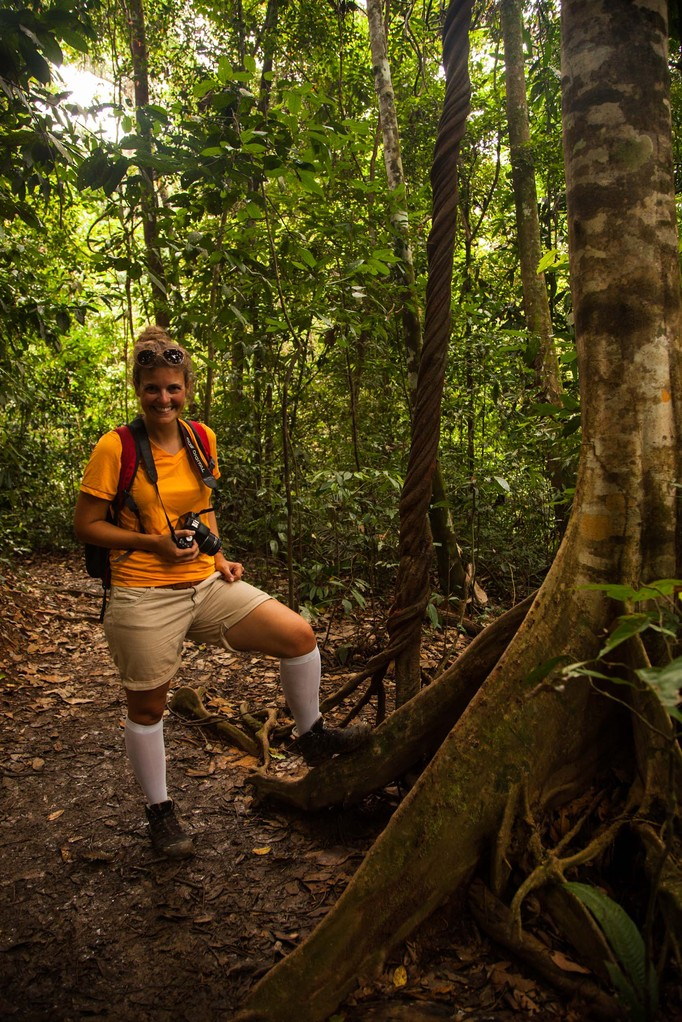 Ab in den Dschungel auf Affenpirsch!
