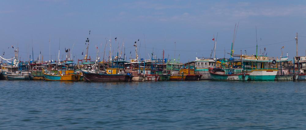 am Hafen von Mirissa...