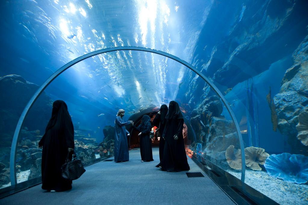 und Aquarium...