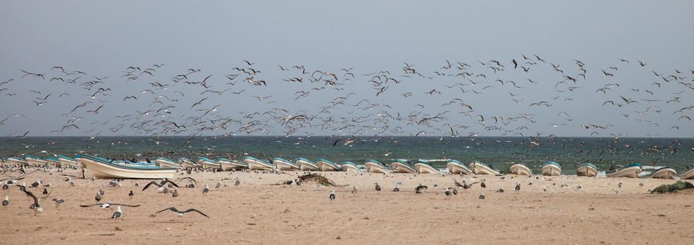 am Strand von Shuwaymia