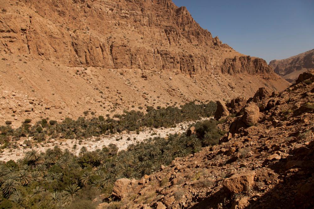 im Wadi Tiwi