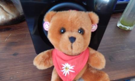 Teddy mit Ohrringen