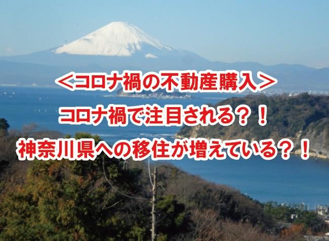 <コロナ禍の不動産購入> コロナ禍で注目される?!神奈川県への移住が増えている?!