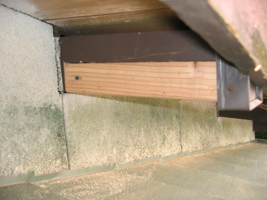 施工中 木部 母屋補強後 塗装