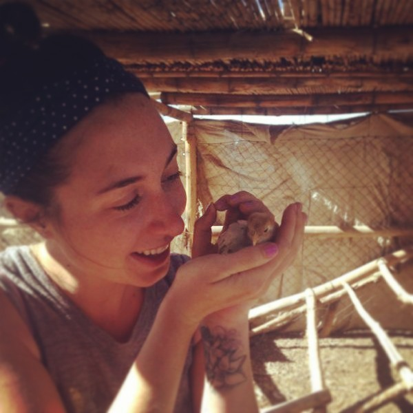 Volunteering at an organic farm in South America through Workaway.info