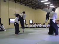 昇級審査、飛び蹴り技