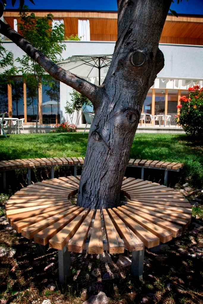 Bench around the walnut tree