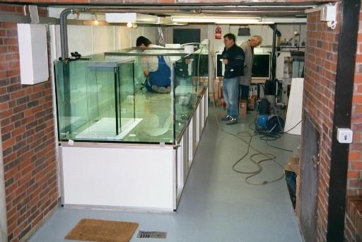 Mit der Verklebung der Bodenscheiben kann begonnen werden. Ca. 20 kg Silikon werden bei einem Aquarium dieser Größenordnung verabeitet.