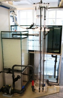 Bild: Bild: Montage des Aquaflotors (Eiweisabschäumer) für ein 3.100l-Aquarium
