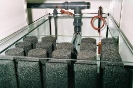Bild: Mechanische Nachfilterung einer 1.000l umfassenden Rieselfilteranlage für ein 4.800l-Süßwasseraquarium