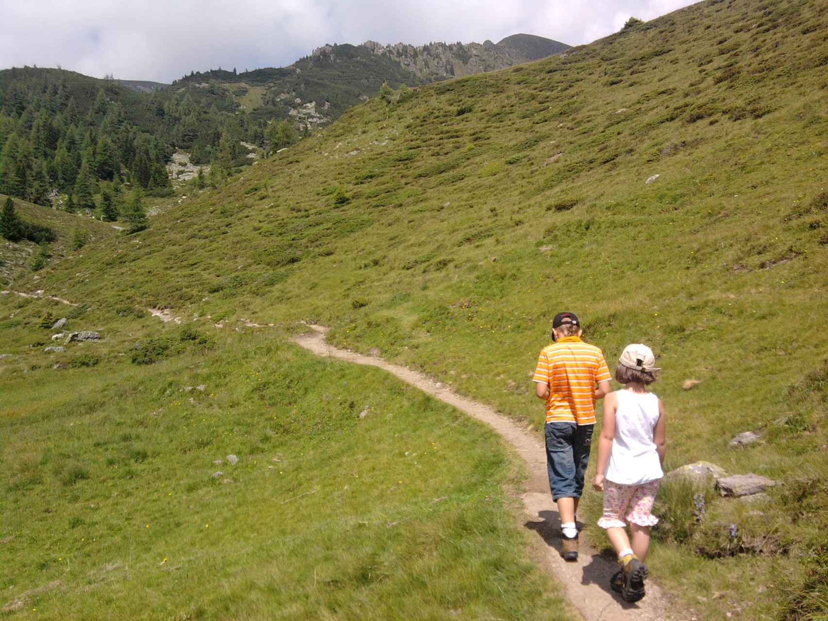 herrliche Wanderwege im Biosphährenpark Nockberge
