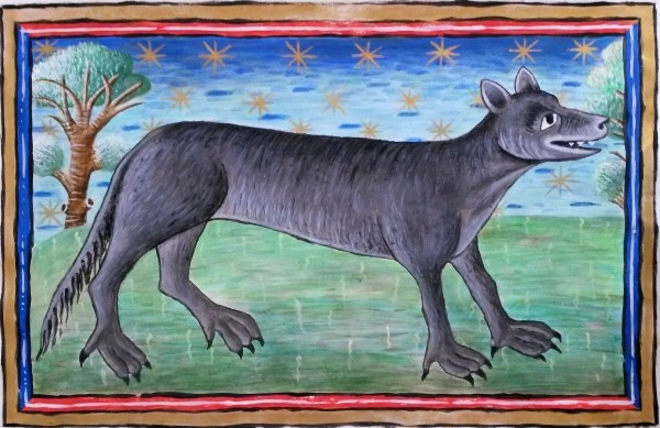 Wolf  (Reproduction of original at Museum Meermanno), 40cm x 26cm