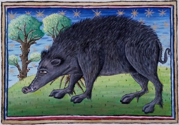 Wild Boar (Reproduction of original at Museum Meermanno), 33.5cm x 23.5cm