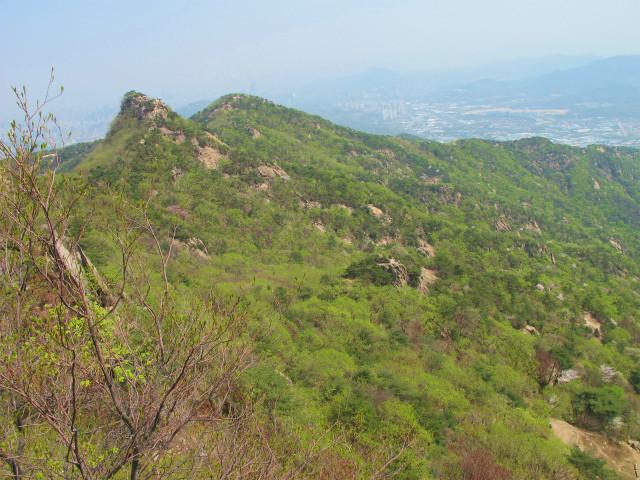 冠岳山の尾根