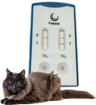 Fassisi T4 Test for Cats